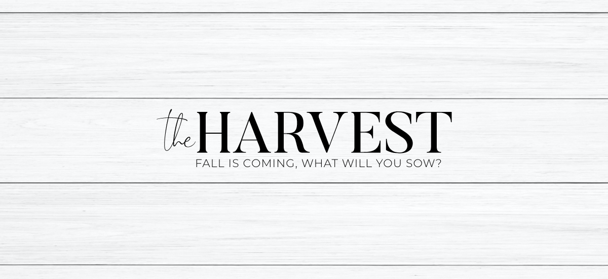 The Harvest: Fall is coming, what will you sow?